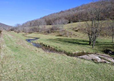 Spring Creeks in the Driftless