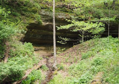Heart of the Driftless caves and springs